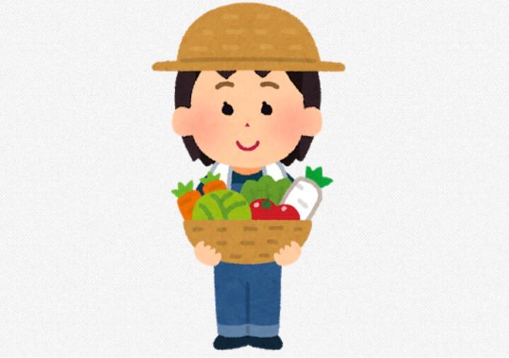 保育園で野菜を育てよう!エダマメ編