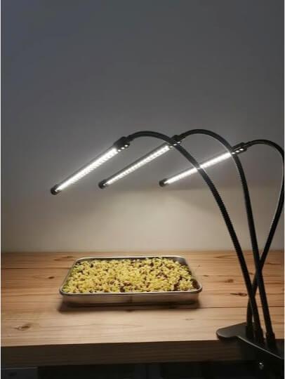 マイクログリーン栽培 LEDライト