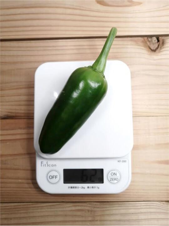 ハラペノトウガラシの重さ